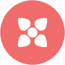 blooming, decoration, decoration flower, floral, flower, flower pattern icon