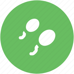fertile, human sperms, reproductive cell, semen, sperms, sperms cells icon