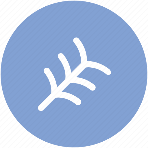 autumn tree, branch, leafless tree, naked branches, tree icon