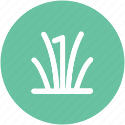 ecology, gardening, grass, grass leaves, leaves, plant icon