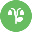 curved, curved shape, leaf, nature, tree, tree curved icon
