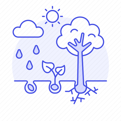 agriculture, development, growth, nature, phases, plant, rain, soil, sprout, stages, sun, system icon