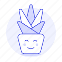 cactus, flowers, happy, nature, plants, plat, pot, smile, succulent icon