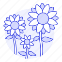 flowers, nature, plants, sunflower, yellow