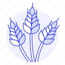 agriculture, golden, harvest, nature, rice, spikes, wheat icon