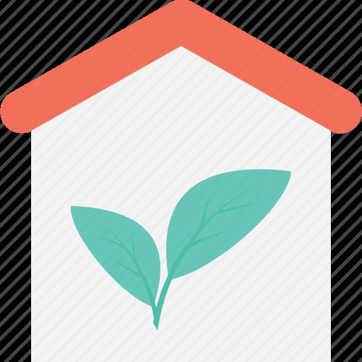 eco house, ecology, green house, house, leaf icon