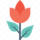 floral, flower, nature, rose, rose bud icon