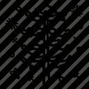 bushy tree, cedar tree, forest tree, green tree, hardwood tree, shrub icon