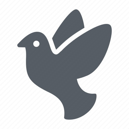 animal, dove, freedom, nature, peace, pigeon icon