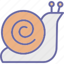 sea animal, shell, slow, snail icon