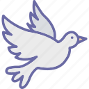 bird, fly, pigeon, seagull icon