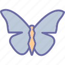 animal, beautiful, butterfly, decoration icon
