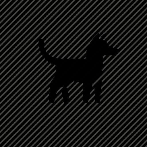 animal, cute, dog, nature, pet, small icon