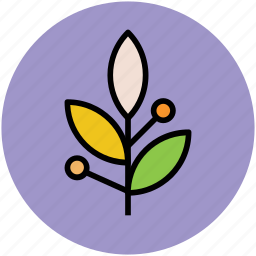 growing plants, leafs, leafy plants, nature, sapling, small plants icon