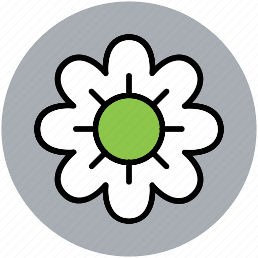 blossom, daisy, flower, nature, spring icon
