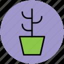 cactus, cactus plant, generic, nature, plant, plant pot icon