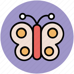 butterfly, flying object, insect, monarch butterfly, nature icon