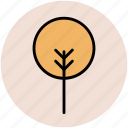 creative shape, ecology concept, generic tree, shrub form, tree form icon