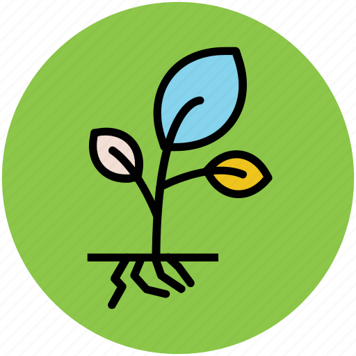 gardening, growing, plant, plant growing, planting, sapling icon