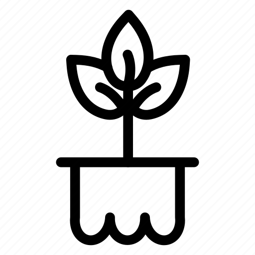 garden, growth, nature, plant icon