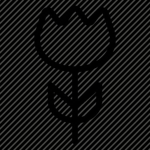 bloom, flower, garden, nature icon