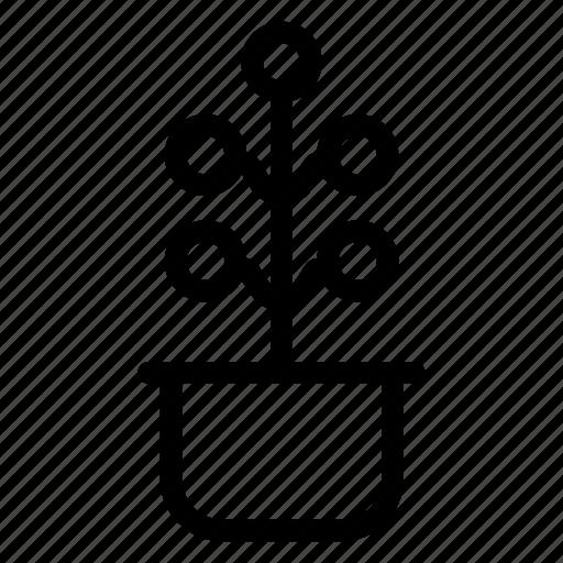 garden, green, growth, nature icon