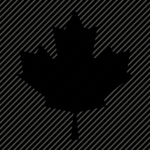 foliage, leaf, maple, nature, plant, tree icon