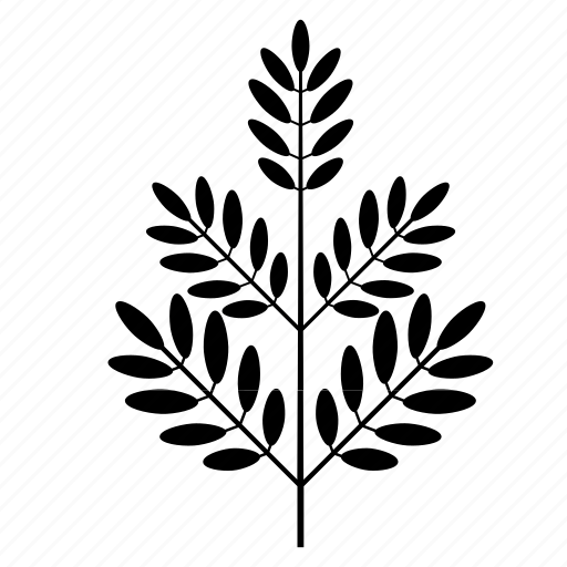 foliage, leaf, nature, plant, tree icon