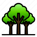 forest, landscape, nature, rain, tree, tropical, view icon