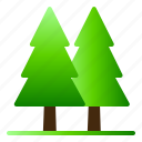 forest, landscape, nature, pine, tree, view icon