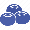 berries, blue, blueberries, blueberry, cyanococcus, fruit, three icon