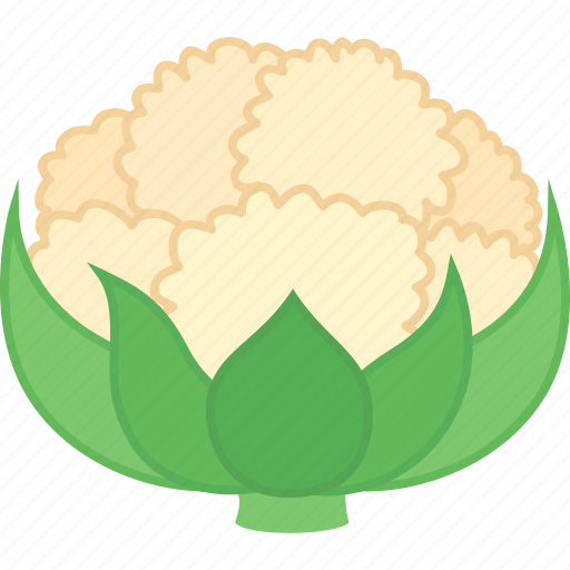 Brassica, califlower, cauliflower, leaves, oleracea, vegetable icon - Download on Iconfinder