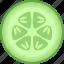 cucumber, cucumis, sativus, section, slice, vegetable, zucchini icon