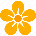 bloom, blossom, five, floral, flower, petals, yellow icon