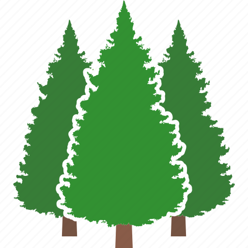 conifer, evergreen, forest, jungle, pine, tree, trees icon
