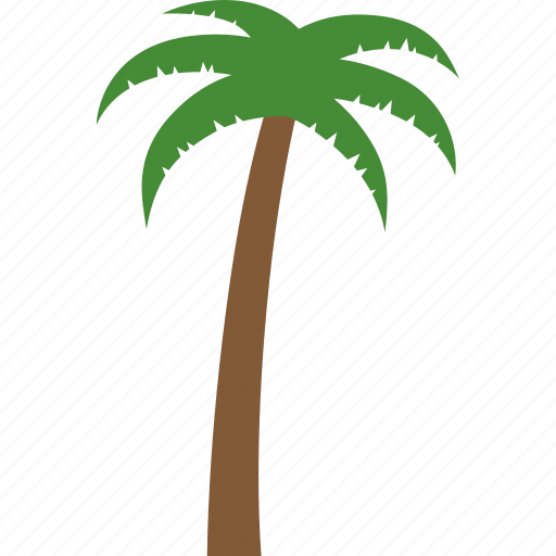 arecaceae, coconut, palm, palmae, tree, tropical, vacation icon