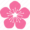 blossom, cherry, festival, flower, peach, pink, sakura icon