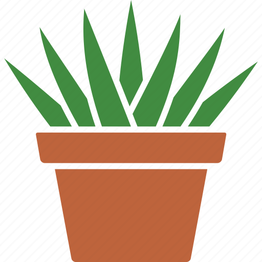 aloe, aristata, houseplant, plant, potted, succulent, succulents icon
