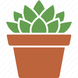 cooperi, haworthia, houseplant, plant, potted, succulent, succulents icon