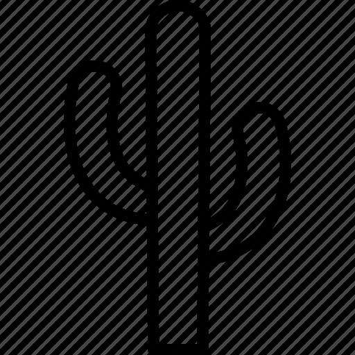 cactaceae, cacti, cactus, dessert, dry, plant, succulent icon
