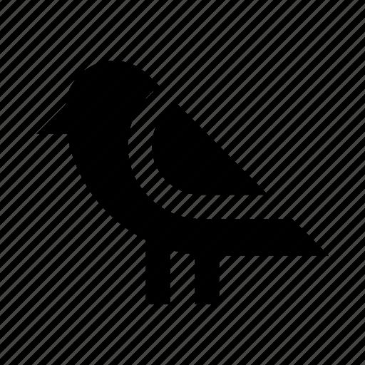 animal, bird, nature, twitter icon