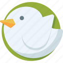 bird, internet, social media, tweet, twitter icon