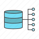 connection, database, link, share