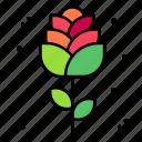 rose, flower, petal, botanical, blossom