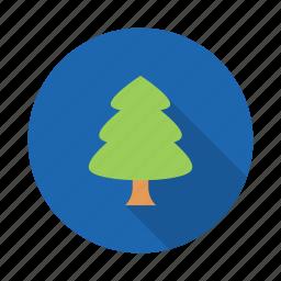 ornament, pine icon
