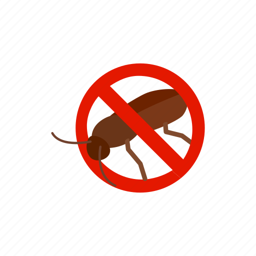 blog, cockroach, disease, insect, isometric, pest, warning icon