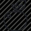 apple fruit, diet, food, nutrition icon