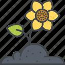 bloom, blossom, flower, flower bed, garden, gardening, soil icon