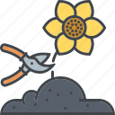 clipping, cutting, equipment, flower, flower bed, garden, gardening icon