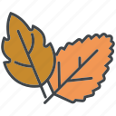 autumn, fall, foliage, garden, gardening, leaves, nature icon